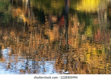 Reflections of autumn fall foliage in changgyeong palace in seoul, south korea