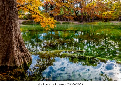 Reflections of the Beautiful Fall Foliage Surrounding the Clear Frio River, Texas.