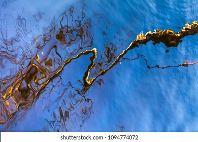 Reflections of a birch tree in the lake water. Abstract background.