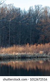 Reflections in the Kalamazoo River