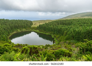 Reflections of Lagoa seca lake in Pico Island, Azores