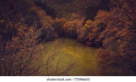Reflections in a lake in autumn