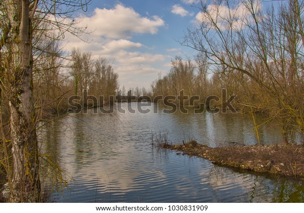 Reflections in a lake surrounded by trees