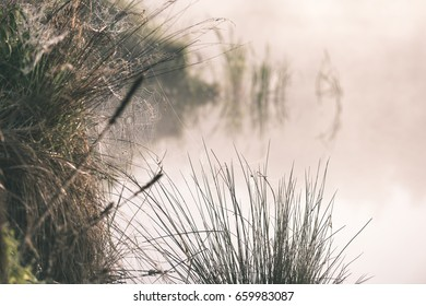 reflections in the lake water at sunrise with morning mist over the water and bright sun in summer - vintage effect look