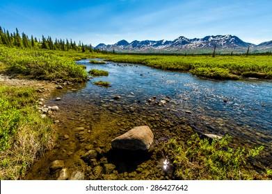 Reflections on a creek off Denali Highway in Alaska.