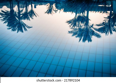 Reflections of palm trees in the calm blue water of a swimming pool conceptual of tropical summer vacations and travel