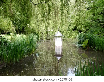 Reflections in a secluded forest garden.