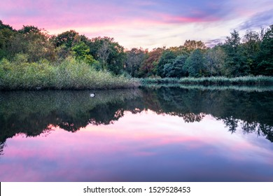 Reflections of a sunset on a lake with a duck on it