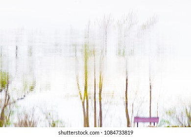 Reflections of trees and bench in the bright morning