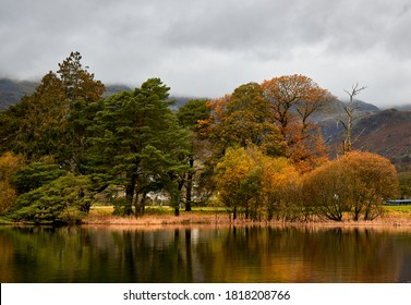 Reflections of trees in Coniston Water in Cumbria, England