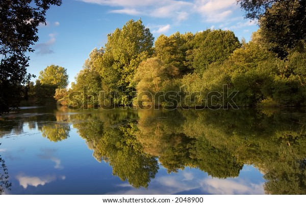 Reflections of trees in a lake