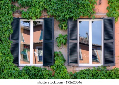 Reflections in two windows with shutters and green ivy
