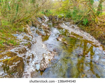 Reflections of the woodland on the banks of the shallow, clear waters of the River Mawddach, in Gwynedd, Wales,
