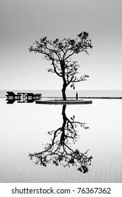 A Reflective Tree