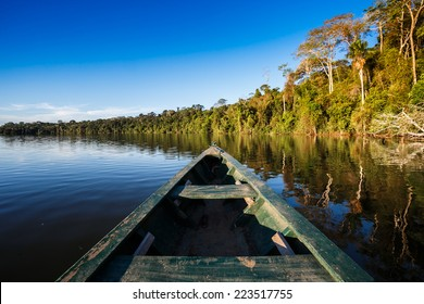 reflects of the jungle on the water of the river in the amazon