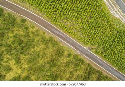 Reforestation Comparison Aerial Cotopaxi Ecuador