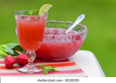 Refreshing Juice Cocktail Drink
