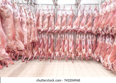 Refrigerated warehouse, hanging hooks of frozen lamb carcasses.Halal Certified   halal cut.