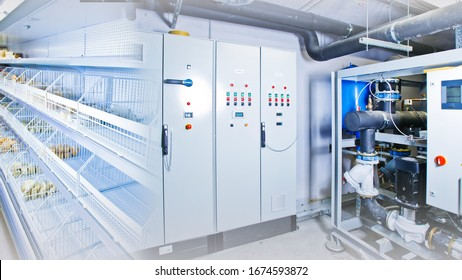 Refrigeration. Refrigeration chamber for food storage. Racks in the refrigerator. Refrigerator control system. Engine in the cooling chamber shield for controlling freezer. Equipment for restaurants