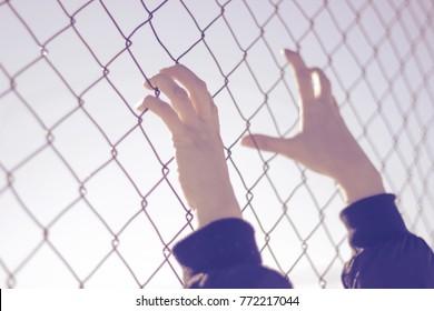 Refugee hands on fence