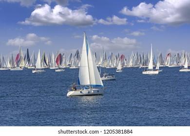Regatta Barcolana in the Gulf of Trieste, Italy