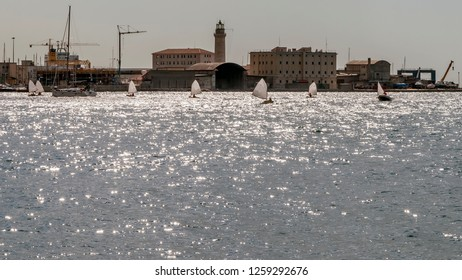 Regatta of optimist boats in the Gulf of Trieste, Friuli Venezia Giulia, Italy