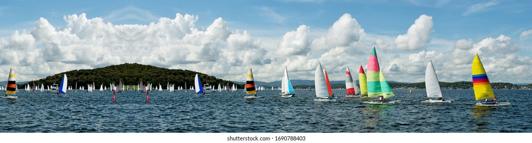 Regatta Panorama. Children Sailing small sailboats (Catamarans) with colourful sails on a coastal lake in competition. Teamwork by junior sailors.  Lake Macquarie, Australia. Photo for commercial use.