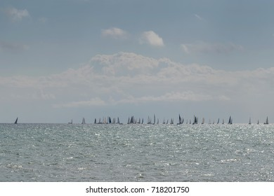 Regatta of sailing boats. Spain. La Manga. Spain.