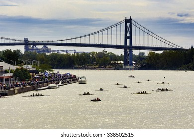 Regatta under Suspension Bridge