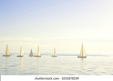 Regatta, Yachts with the sails, sailing competition, Croatia, Mediterranean sea