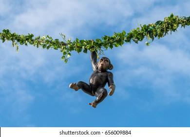 Regensburg, Bavaria, Germany,  Mai  25, 2017, Hanging monkey on a rope at a folk festival in Regensburg