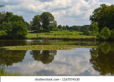 Region of the thousand ponds, reflections in a pond with pink water lilies, a thousand ponds, region, Franche-Comté, France