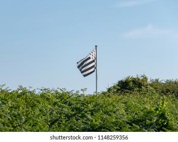 Regional Breton flag with blue sky and ferns