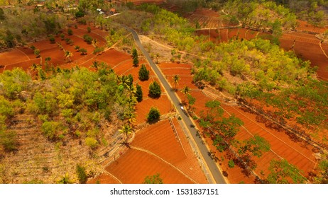regional road in Indonesia. Plantations on dry land in the dry season. Aerial arid regions. Infrastructure in Asia and Java