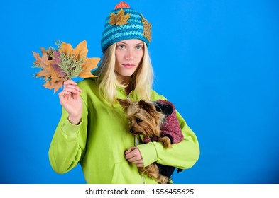 regular flea treatment. Girl hug cute dog and hold fallen leaves. Woman carry yorkshire terrier. Take care pet autumn. Veterinary medicine concept. Health care for dog pet. Pet health tips for autumn.