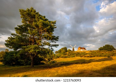 Reigate Heath Golf Course Clubhouse and Windmill, Surrey England United Kingdom