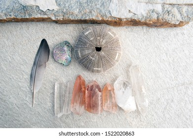 Reike Healing energy still life photography with seagull feather seashells and Lemurian crystals and quartz stones. Pink Quartz crystals carry the message of Ancient Lemuria.