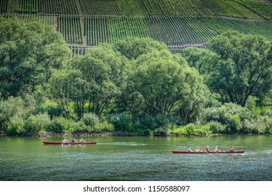 Reil, moselle, germany, 08-05-2018: two skiffs passing the steep vineyard-slopes of village of Reil at the banks oft the river moselle on a sunny summer day