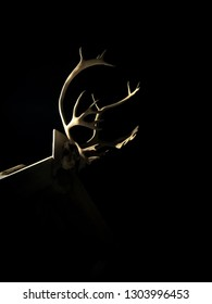Reindeer antlers on an old trappers cabin outside Longyearbyen in Svalbard, Norway.