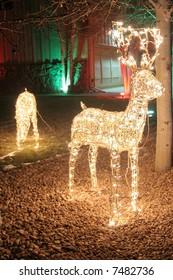 Reindeer lights in yard for christmas