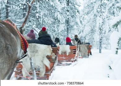 Reindeer safari sledge, Finland, Lapland