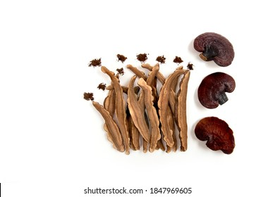 Reishi mushroom ,slices and powder isolated on white background.top view, flat lay