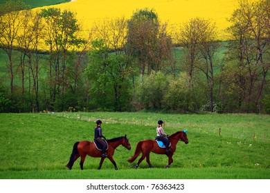Reiter mit Rapsfeld, Klettgau, Schweiz