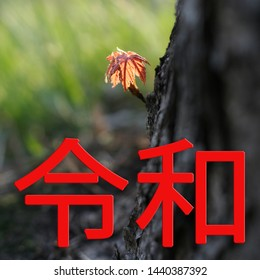The Reiwa period Reiwa jidai. The next era of Japan on a green background a tree and an orange sprout of leaves. Text in Japanese is Reiwa.