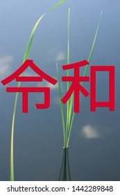 The Reiwa period Reiwa jidai. The next era of Japan against the background of water in which the sky is reflected and sedge grows. Text in Japanese is Reiwa.