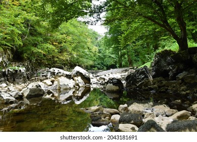 Reka river at low water flow with a a small pool and a reflection of the white rocks in the pool near Matavun in Littoral region of Slovenia - Shutterstock ID 2043181691