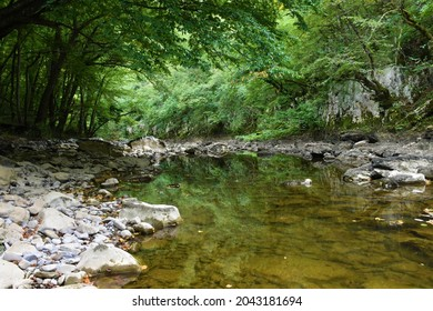 Reka river in low water flow with a reflection of the trees in water in Karst region of Slovenia - Shutterstock ID 2043181694