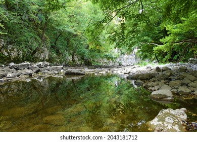 Reka river in low water flow with a reflection of the trees in water in Karst region of Slovenia - Shutterstock ID 2043181712