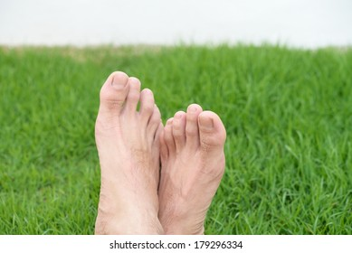 Relax feet in the green garden background