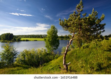 The relax landscape, summer on the river, silence